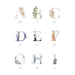 Buchstabenposter_Beispiele2